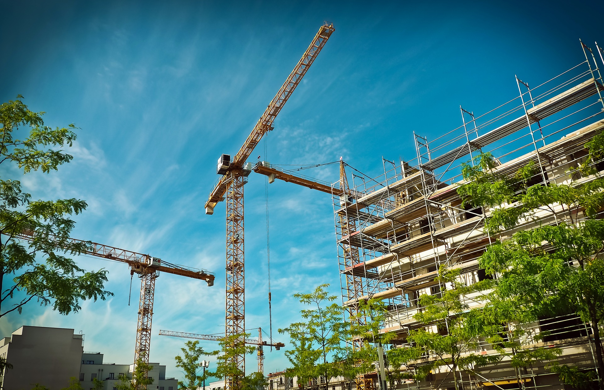 the role of building surveyors Land and building surveying land and building surveyors play a vital role in the design and development of new properties and the maintenance of existing ones.